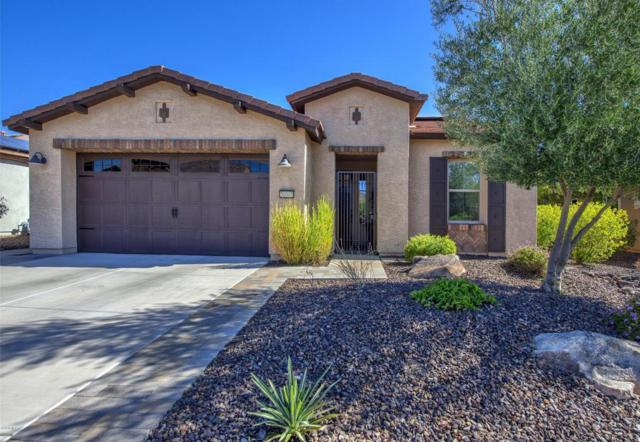 30001 N 129TH Avenue, Peoria, AZ 85383 (MLS #5748049) :: Sibbach Team - Realty One Group