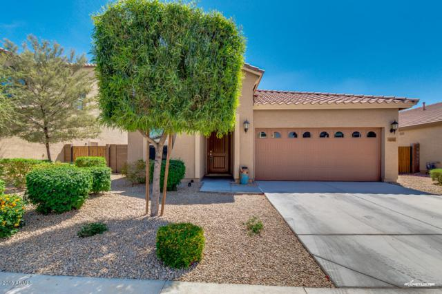 16941 W Mohave Street, Goodyear, AZ 85338 (MLS #5748052) :: Occasio Realty