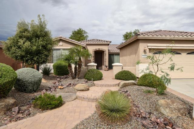 42688 W Kingfisher Drive, Maricopa, AZ 85138 (MLS #5748112) :: Kortright Group - West USA Realty