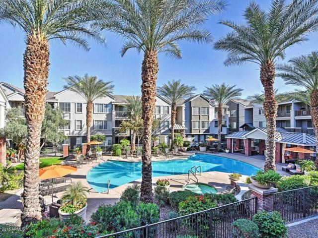 909 E Camelback Road #2019, Phoenix, AZ 85014 (MLS #5748187) :: The Laughton Team