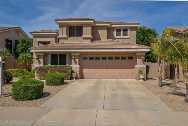 6968 W Potter Drive, Glendale, AZ 85308 (MLS #5748229) :: Lifestyle Partners Team