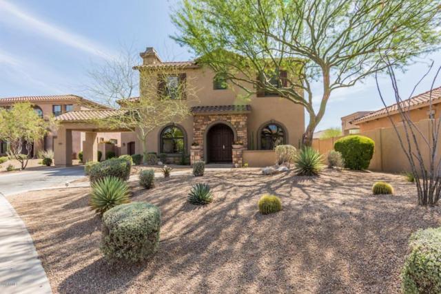 9955 E Desert Jewel Drive, Scottsdale, AZ 85255 (MLS #5748254) :: My Home Group