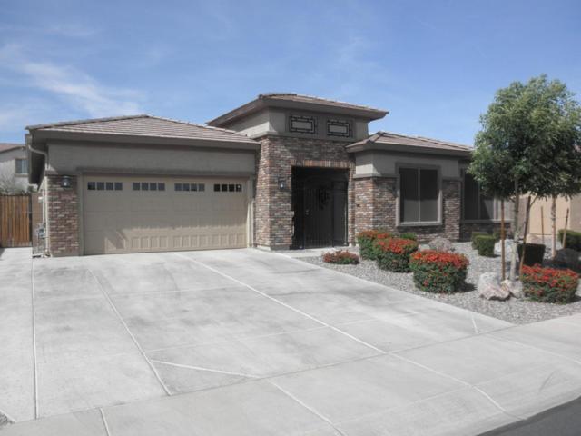 3638 E Chestnut Lane, Gilbert, AZ 85298 (MLS #5748298) :: Essential Properties, Inc.