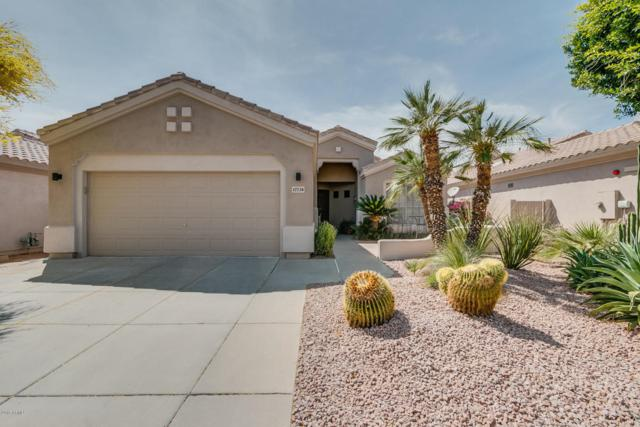 17738 N 80TH Place, Scottsdale, AZ 85255 (MLS #5748423) :: The Wehner Group