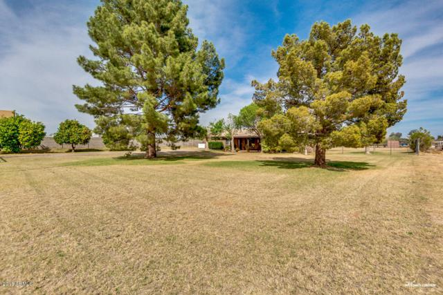7231 N 177th Avenue, Waddell, AZ 85355 (MLS #5748473) :: Essential Properties, Inc.