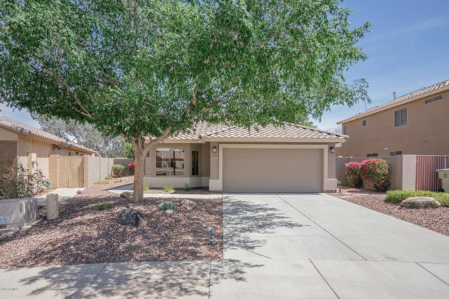 17175 N 53RD Avenue, Glendale, AZ 85308 (MLS #5748511) :: Kortright Group - West USA Realty