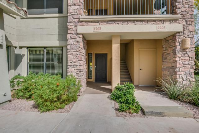 21320 N 56TH Street #1203, Phoenix, AZ 85054 (MLS #5748552) :: Brett Tanner Home Selling Team