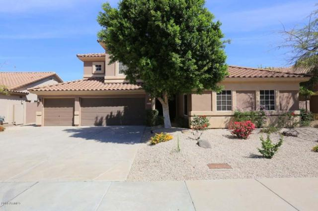 5210 E Hartford Avenue, Scottsdale, AZ 85254 (MLS #5748629) :: My Home Group