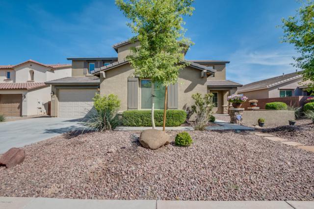 758 W Yellow Wood Avenue, San Tan Valley, AZ 85140 (MLS #5748680) :: My Home Group