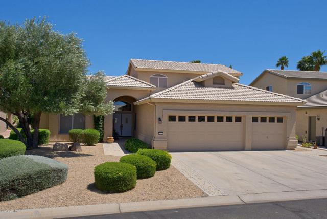 3731 N Granite Drive, Goodyear, AZ 85395 (MLS #5748854) :: The Sweet Group