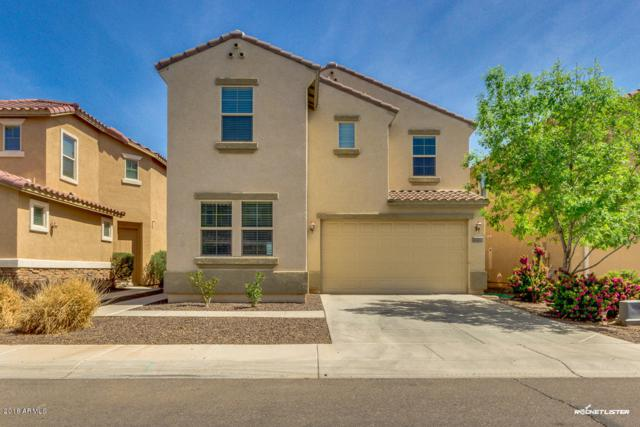 31317 N Cavalier Drive, San Tan Valley, AZ 85143 (MLS #5748862) :: Kortright Group - West USA Realty