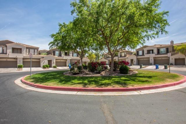 3131 E Legacy Drive #2043, Phoenix, AZ 85042 (MLS #5748863) :: My Home Group