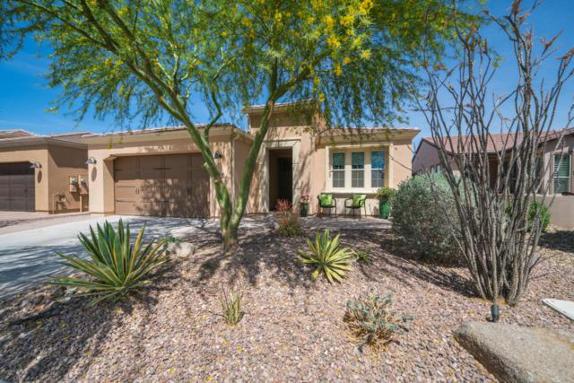 1744 E Verde Boulevard, San Tan Valley, AZ 85140 (MLS #5748874) :: The Wehner Group