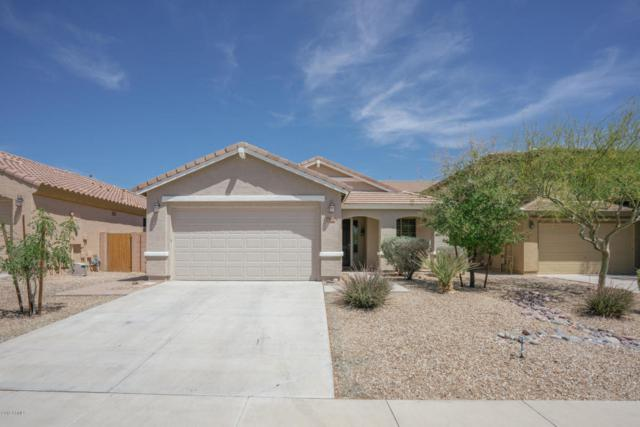 30153 N 71ST Drive, Peoria, AZ 85383 (MLS #5748989) :: The Laughton Team