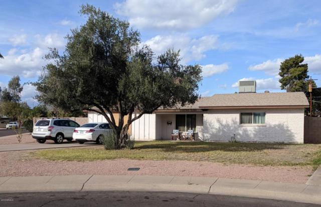 3919 N 85TH Street, Scottsdale, AZ 85251 (MLS #5749000) :: My Home Group