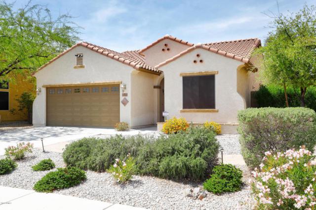 3582 N 308TH Lane, Buckeye, AZ 85396 (MLS #5749015) :: The Sweet Group