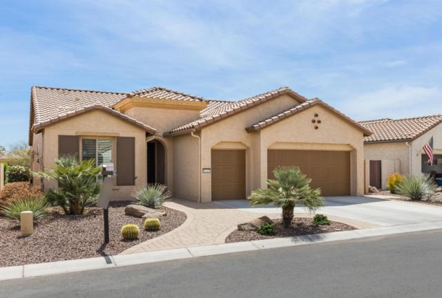 16347 W Mulberry Drive, Goodyear, AZ 85395 (MLS #5749075) :: The Sweet Group