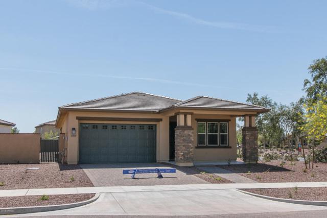 20669 W Carlton Manor Place, Buckeye, AZ 85396 (MLS #5749134) :: Occasio Realty
