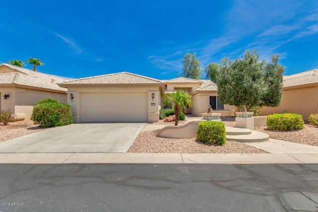 3411 N 146TH Drive, Goodyear, AZ 85395 (MLS #5749197) :: The Sweet Group