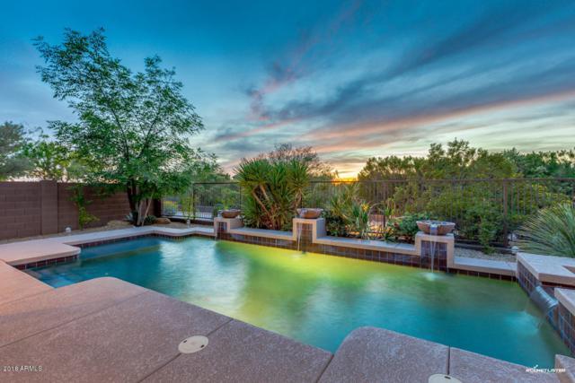 21608 N 37TH Street, Phoenix, AZ 85050 (MLS #5749226) :: RE/MAX Excalibur