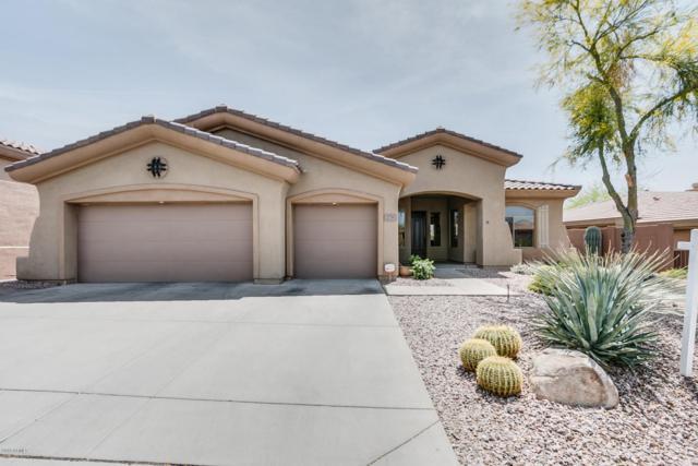 2735 W Plum Hollow Drive, Anthem, AZ 85086 (MLS #5749341) :: Occasio Realty