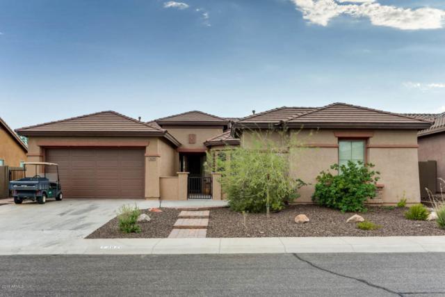 3629 W Links Drive, Phoenix, AZ 85086 (MLS #5749358) :: Cambridge Properties