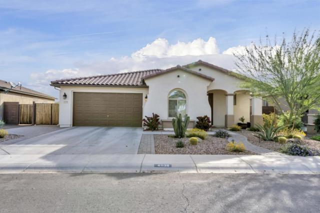 41139 N Laurel Street, San Tan Valley, AZ 85140 (MLS #5749438) :: Santizo Realty Group