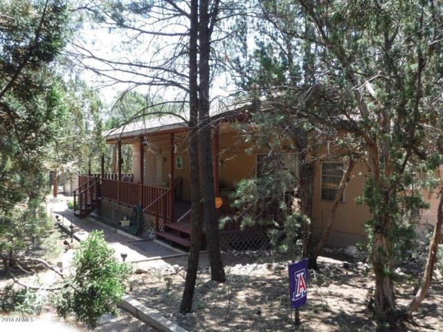 2973 Western Star Drive, Overgaard, AZ 85933 (MLS #5749476) :: Essential Properties, Inc.
