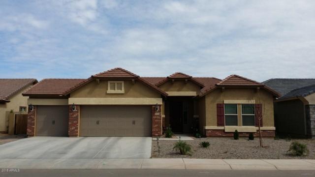 11514 E Sable Avenue, Mesa, AZ 85212 (MLS #5749503) :: Occasio Realty