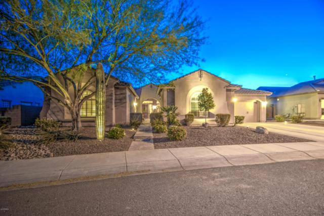 26004 N 50th Avenue, Phoenix, AZ 85083 (MLS #5749644) :: REMAX Professionals