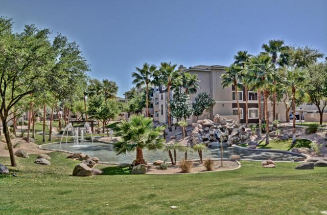 5345 E Van Buren Street #279, Phoenix, AZ 85008 (MLS #5749699) :: Riddle Realty