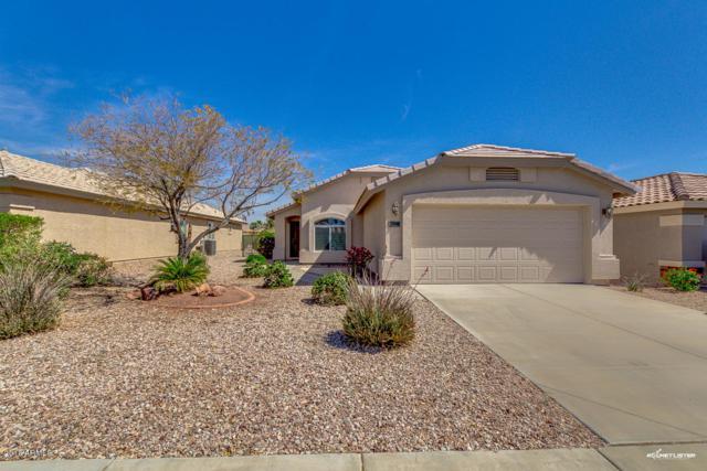 23168 W Arrow Drive, Buckeye, AZ 85326 (MLS #5749826) :: Occasio Realty