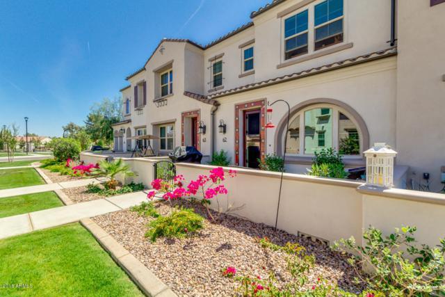 2477 W Market Place #62, Chandler, AZ 85248 (MLS #5749835) :: Realty Executives