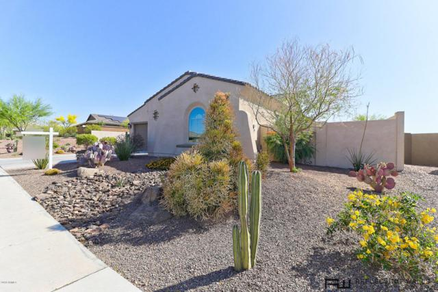 12251 S 182ND Avenue, Goodyear, AZ 85338 (MLS #5749842) :: Occasio Realty