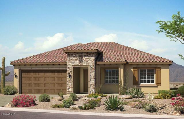 21716 N 265TH Lane, Buckeye, AZ 85396 (MLS #5749909) :: Desert Home Premier