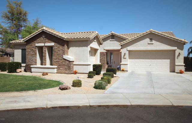 422 E Kaibab Place, Chandler, AZ 85249 (MLS #5749991) :: My Home Group