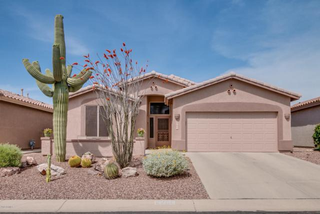8266 E Masters Road, Gold Canyon, AZ 85118 (MLS #5750025) :: Occasio Realty