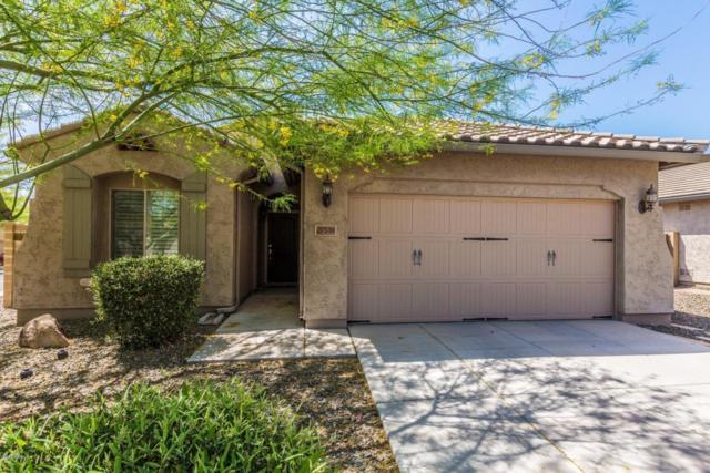 27518 N 18TH Avenue, Phoenix, AZ 85085 (MLS #5750044) :: Occasio Realty