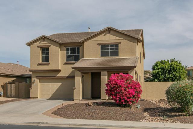 6843 W Morning Vista Drive, Peoria, AZ 85383 (MLS #5750058) :: The Laughton Team