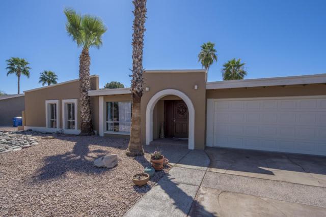 5119 E Shaw Butte Drive, Scottsdale, AZ 85254 (MLS #5750076) :: The Jesse Herfel Real Estate Group