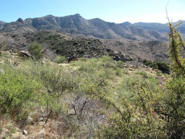 0 N Columbia Mine Road, Morristown, AZ 85342 (MLS #5750120) :: Brett Tanner Home Selling Team