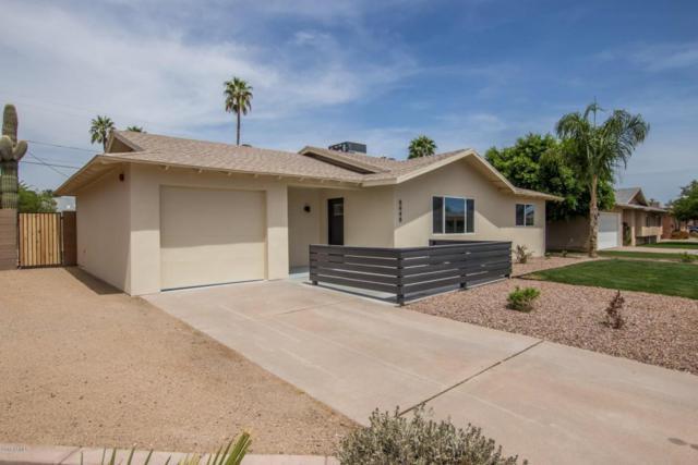 8448 E Roanoke Avenue, Scottsdale, AZ 85257 (MLS #5750213) :: The Wehner Group