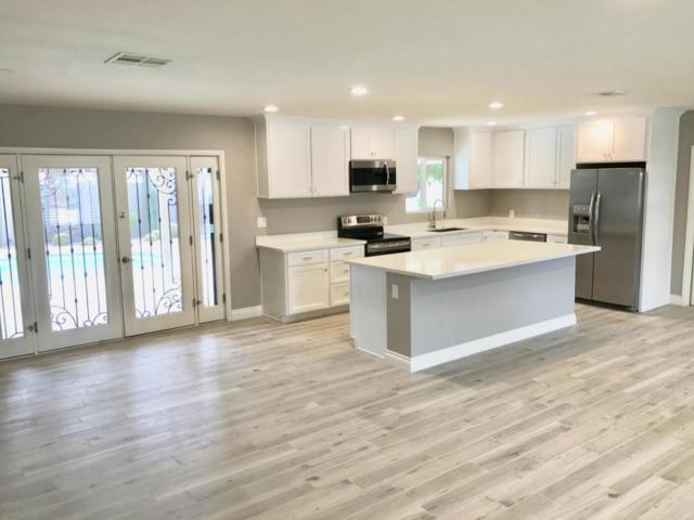 1509 W Flynn Lane, Phoenix, AZ 85015 (MLS #5750253) :: My Home Group