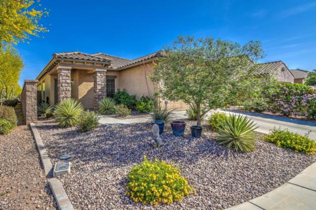 8066 W Millerton Way, Florence, AZ 85132 (MLS #5750323) :: Occasio Realty