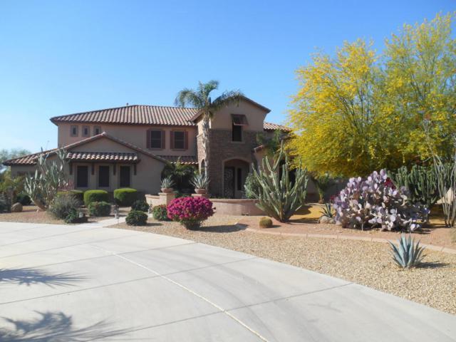 14591 W Becker Lane, Surprise, AZ 85379 (MLS #5750339) :: Occasio Realty