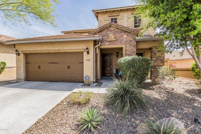 27517 N 16TH Lane, Phoenix, AZ 85085 (MLS #5750344) :: Occasio Realty