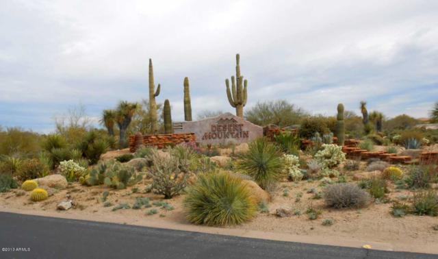 10165 E Joy Ranch Road, Scottsdale, AZ 85262 (MLS #5750363) :: Yost Realty Group at RE/MAX Casa Grande