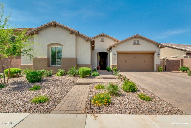 2521 E Lindrick Drive, Gilbert, AZ 85298 (MLS #5750386) :: Riddle Realty