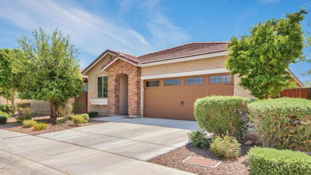 5603 W Buckskin Trail, Phoenix, AZ 85083 (MLS #5750404) :: REMAX Professionals