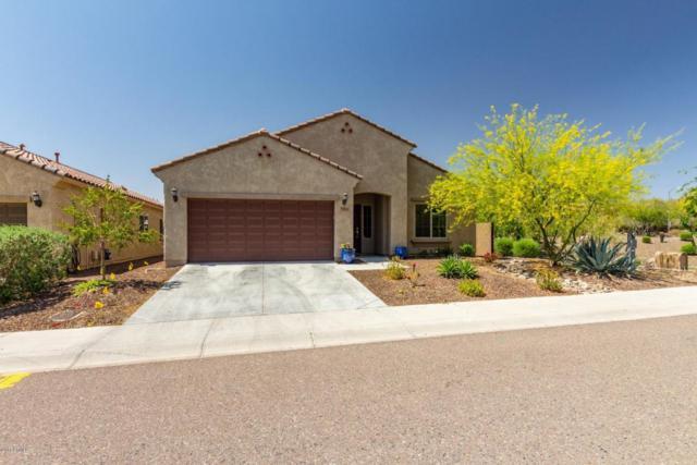 27322 N 51ST Glen, Phoenix, AZ 85083 (MLS #5750428) :: REMAX Professionals